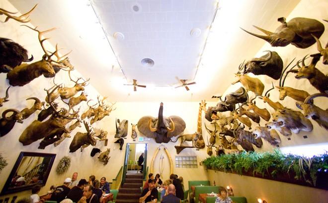 Ăn và ngắm 300 đầu động vật trong nhà hàng tại Mỹ