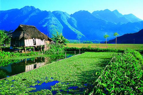 Núi rừng Mai Châu- nơi tạo nên hương vị rượu Mai châu ngon say đắm