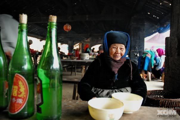 Rượu Mai Hạ- ngon và hấp dẫn mọi du khách, mọi lứa tuổi
