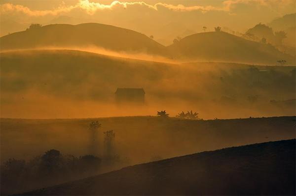 Mộc Châu trong sương mù sáng sớm